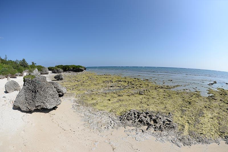 東側のプラベートビーチ
