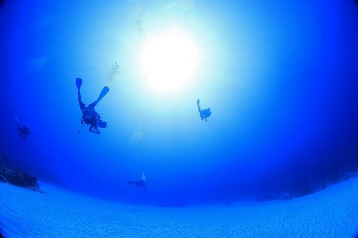 多良間島ダイビング