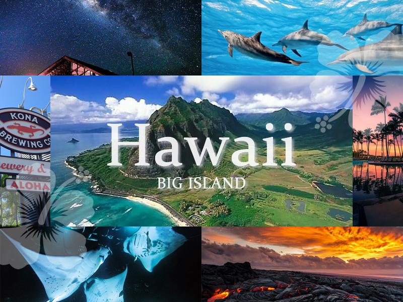 ハワイ島ダイビングツアー